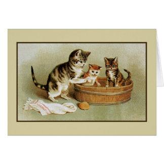 Cute Victorian cat bathing kittens in bath tub Card