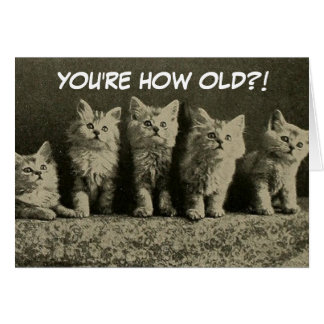 Cute Vintage Retro Kittens Happy Birthday Greeting Card