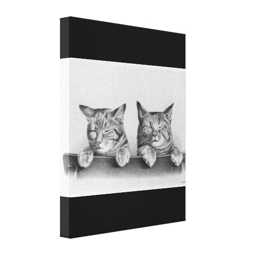 Cute Vintage Sleepy Cats Photo Stretched Canvas Print