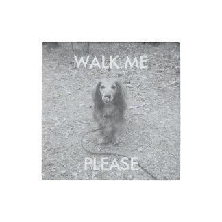 """Cute """"walk me"""" long haired dachshund photo magnet"""