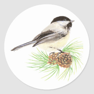 Cute Watercolor Chickadee Bird Pine Tree Classic Round Sticker