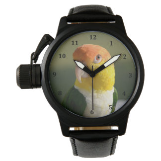 Cute White Bellied Caique Parrot Watch