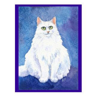 Cute white cat or kitten postcard