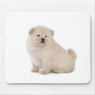 cute white chow chow puppy pup dog mouse pad