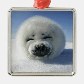 Cute White Fluffy Animal Silver-Colored Square Decoration