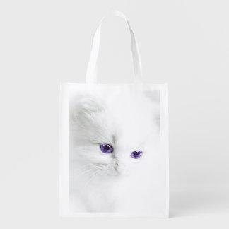 Cute White Kitten with Purple Eyes