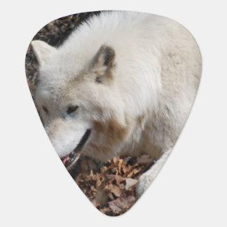Cute White Wolf Guitar Pick