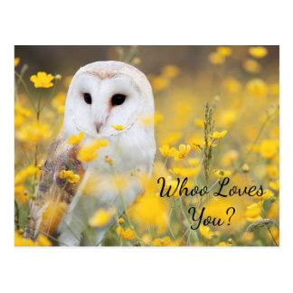 "Cute ""Whoo Loves You"" Owl Postcard"