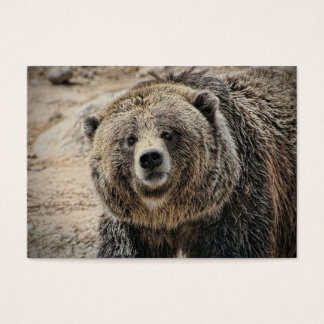Cute Wild Animal Grizzly Bear Face Business Card