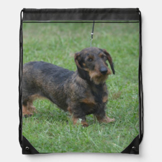 Cute Wire Haired Dachshund Drawstring Backpacks