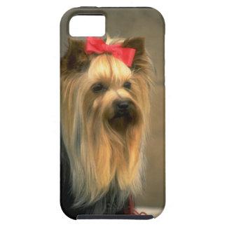 Cute Yorkie Dog - Zazzle iPhone 5 case