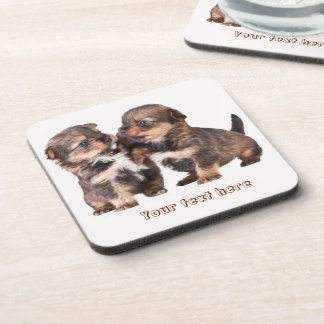 Cute Yorkshire Puppies Coaster