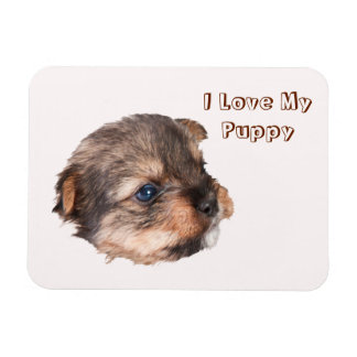 Cute Yorkshire Puppy Face Magnet