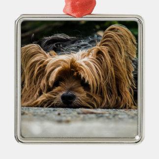 Cute Yorkshire Puppy Metal Ornament