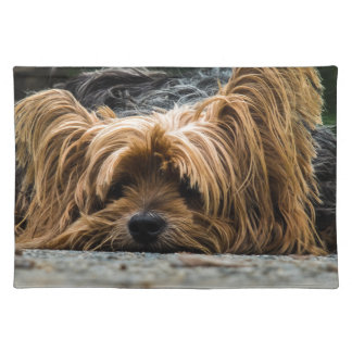 Cute Yorkshire Puppy Placemat