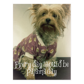Cute Yorkshire Terrier in Pajamas with Quote Postcard