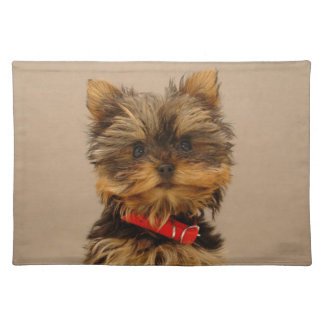 Cute Yorkshire Terrier Placemat