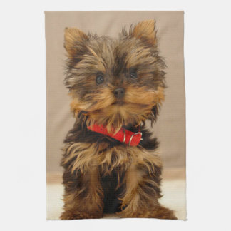 Cute Yorkshire Terrier Tea Towel