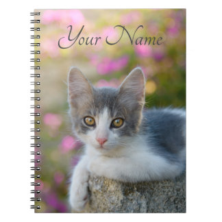 Cute Young Bicolor Cat Kitten Pink Flowers - Name Notebook