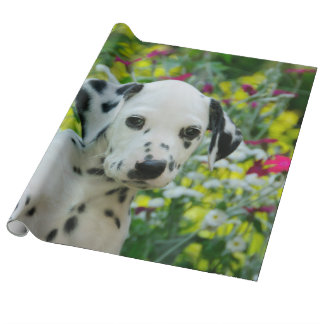 Cute Young Dalmatian Dog Puppy Portrait, Roll Wrapping Paper