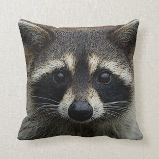 Cute Young Raccoon Face Mask and Stare Close Up Cushion