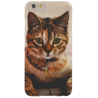 Cute Young Tabby Cat Kitten Kitty Pet Barely There iPhone 6 Plus Case