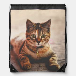 Cute Young Tabby Cat Kitten Kitty Pet Drawstring Bag