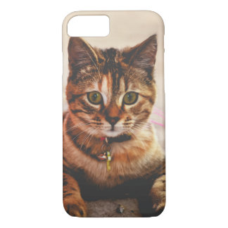 Cute Young Tabby Cat Kitten Kitty Pet iPhone 7 Case