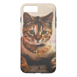 Cute Young Tabby Cat Kitten Kitty Pet iPhone 8 Plus/7 Plus Case