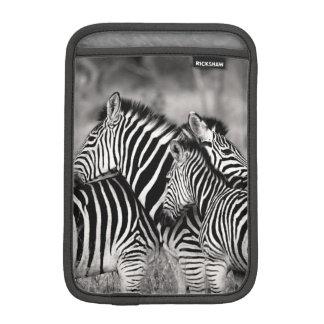 Cute Zebra Herd Nature Safari Black White iPad Mini Sleeve
