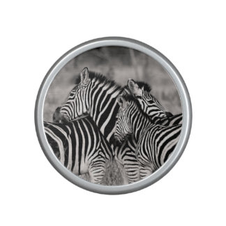 Cute Zebra Herd Nature Safari Black White Speaker