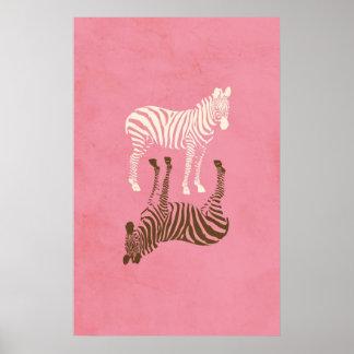 Cute Zebras Picture Poster