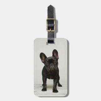Cutest French Bulldog Puppy Luggage Tag