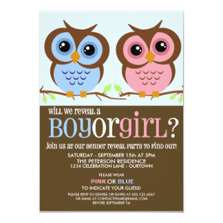 Cutie Owls Gender Reveal Party Invitation Invitation