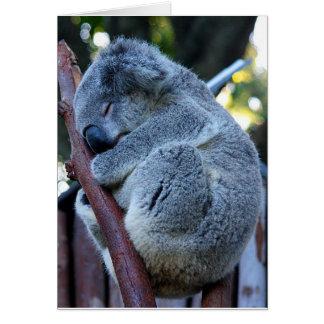 Cutie Pie Koala Card