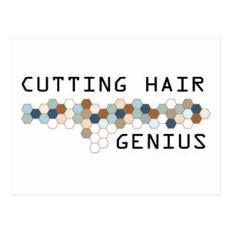 Cutting Hair Genius Post Cards