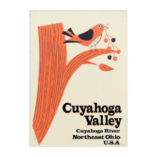 Cuyahoga Valley National Park Acrylic Wall Art