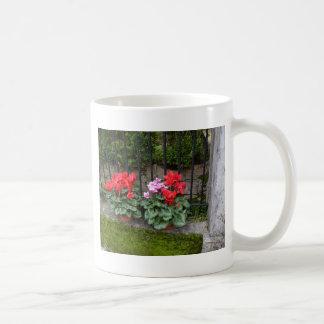 Cyclamen Mugs