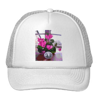 Cyclamen with Crystal Hats