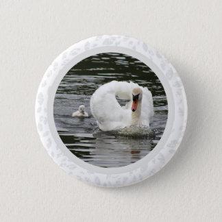 Cygnet Following Swan 6 Cm Round Badge