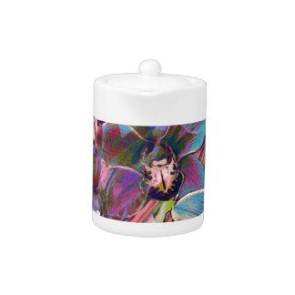 Cymbidium Orchid Carnival