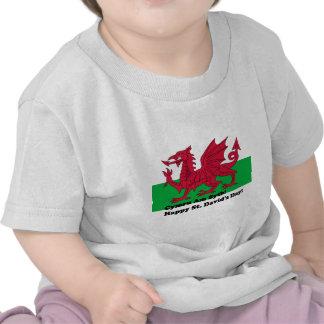 Cymru Am Byth - Happy St David s Day T-shirt