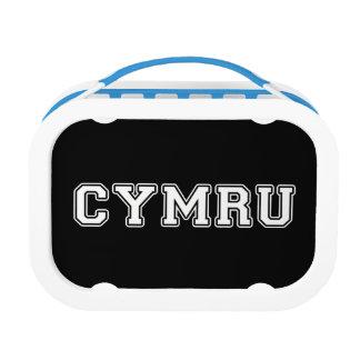 Cymru Lunch Box