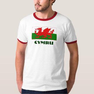 Cymru/Welsh flag with Cymru text. T-Shirt