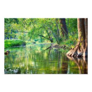 Cypress Creek Evening Photo Print