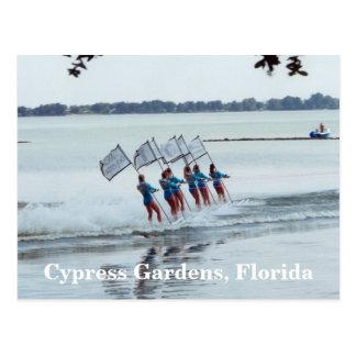 Cypress Gardens Florida Girls WaterSkiing PostCard