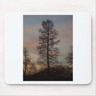 Cypress in the sunrise mousepad