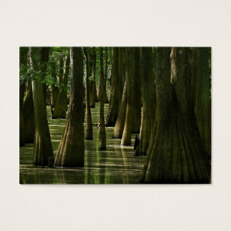 Cypress Swamp ATC Card