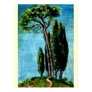 CYPRESS TREES AND MEDITERRANIAN PINE IN TUSCANY POSTCARD