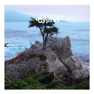 Cyprus Custom Announcement